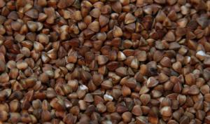 BuckwheatSeedPic